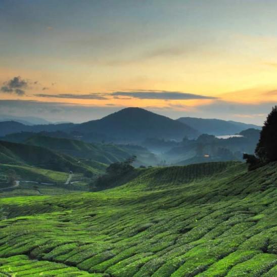 malaysia-travel